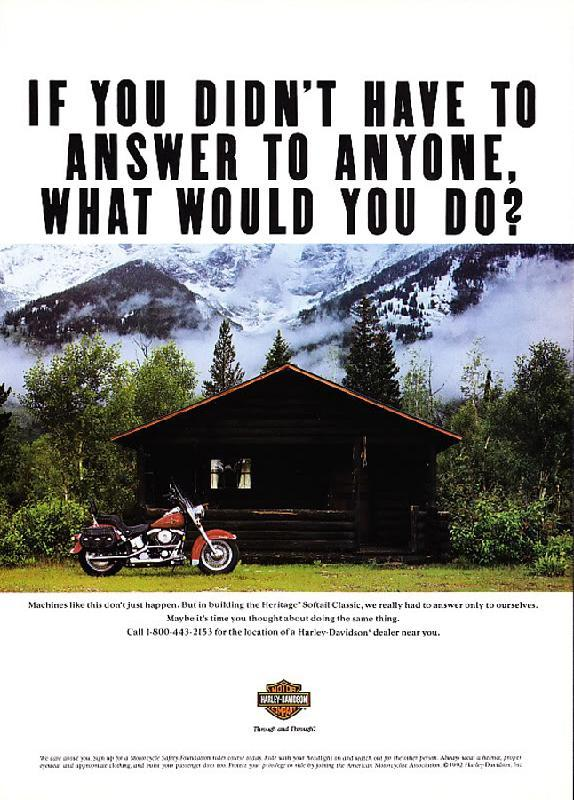 If you didn't have to answer to anyone, what would you do?, 1993